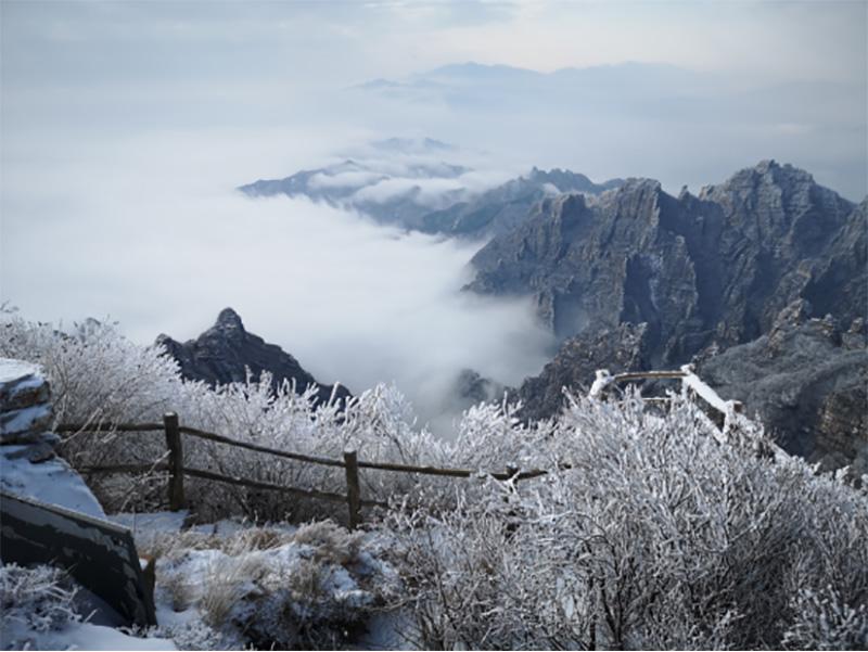 河北白石山现极致雪景 美
